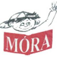 Üdvözöljük a Móra Ferenc Általános Iskola ideiglenes honlapján!