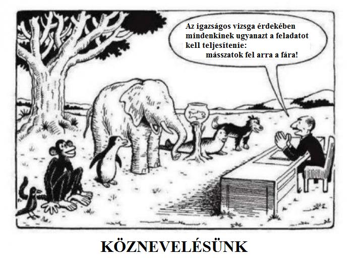kÖZNEVELÉSÜNK.png