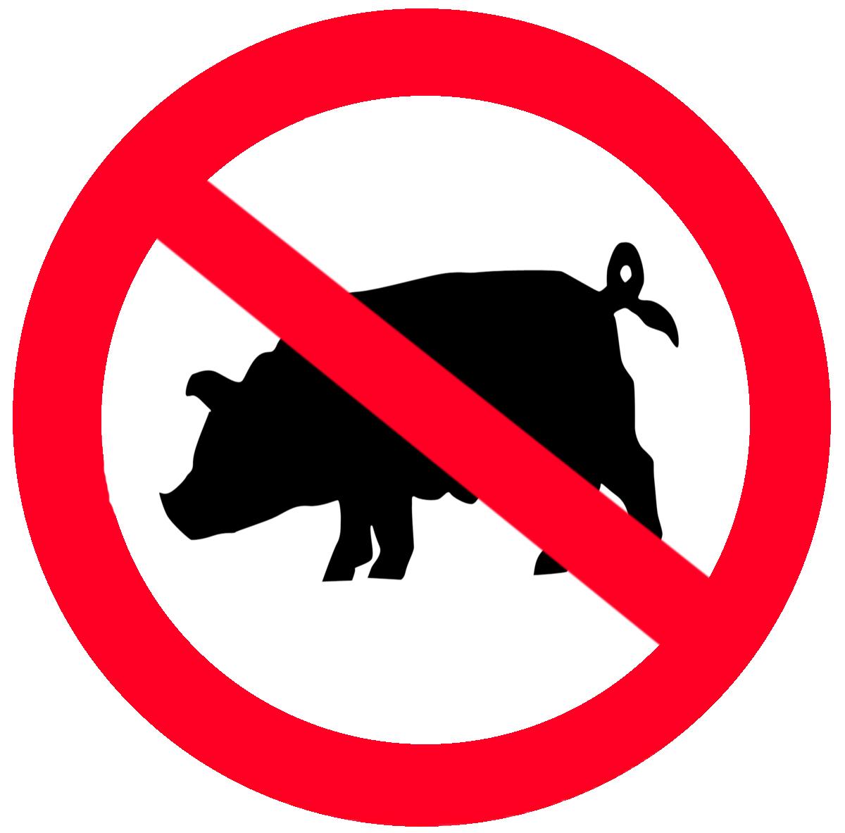 no pig.jpg