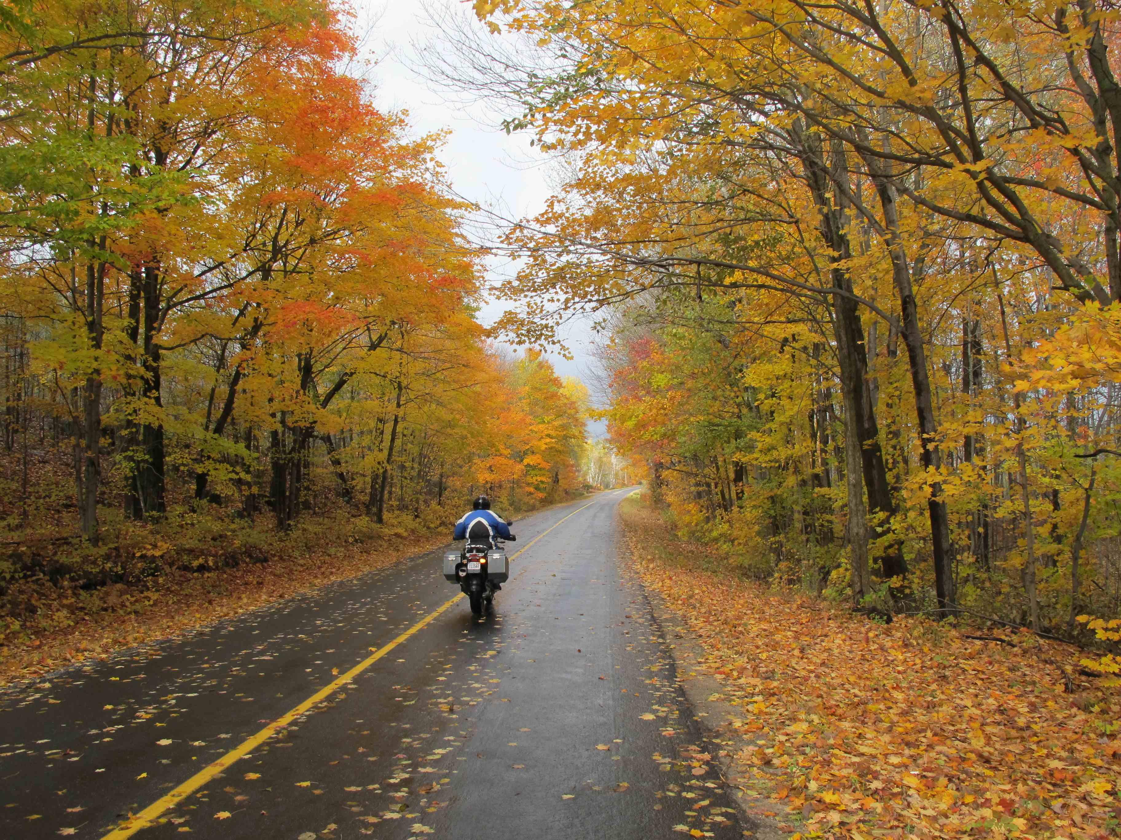 Autumn-glory.jpg