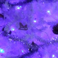 Karácsonyi zarándoklat