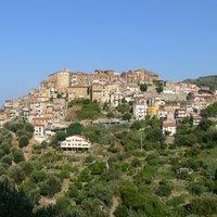 Olívaolaj - A folyékony arany
