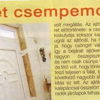 Ötletmozaik magazin - 2011 január