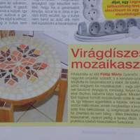 Ötlet mozaik magazin 2011 októberi szám!