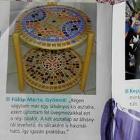 Praktika magazin - 2011 május