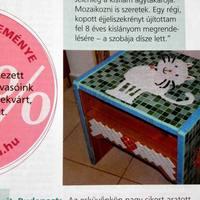 Praktika magazin - 2011 augusztus
