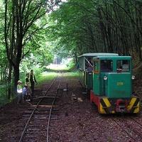 Védetté nyilvánítanak két vasútvonalat