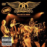 DVD: Aerosmith - You Gotta Move (2004)