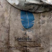 Special (2006)