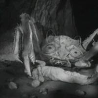 Gyöngyszemek az '50-es, '60-as évekből #2: Attack of the Crab Monsters
