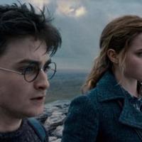 Harry Potter és a Halál Ereklyéi I. rész (2)