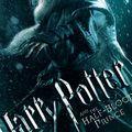 Potter, Potter, Harry Potter