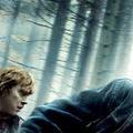 Harry Potter poszterek