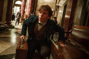 Mágikus szörnyekkel támad az új Harry Potter film