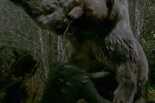 Halálos grizzly támadás Alaszkában