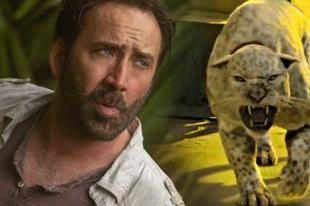 Predátorokra vadászik Nicolas Cage