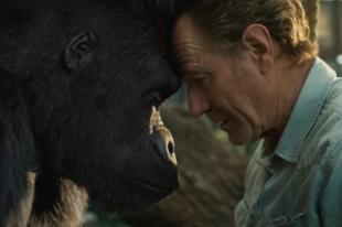 Hatalmas gorillával parolázik a Breaking Bad sztárja