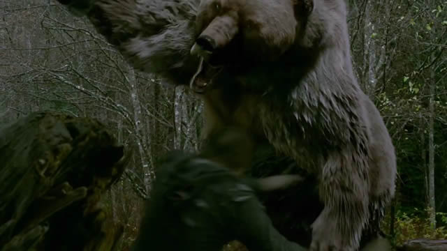 into-the-grizzly-maze-trailer.jpg
