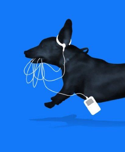 earbud.jpg