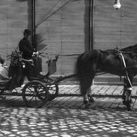Kik voltak a bérkocsisok Budapesten?