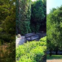 13 hely Budapesten, ahol nyugodtan olvashatunk a szabadban