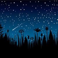Így lesz feledhetetlen élmény a csillaghullás