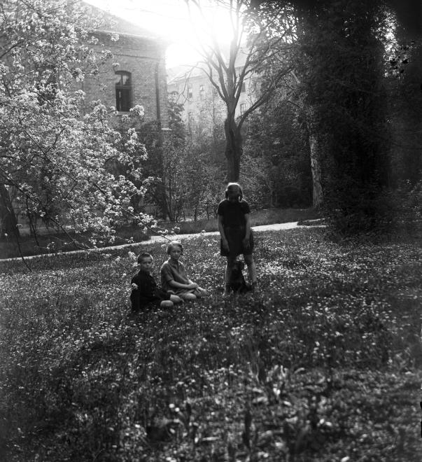 1928_hadaprod.jpg