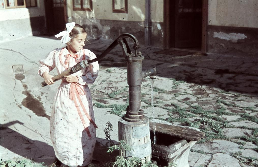 1943_nortonkut_idkonoktamas.jpg