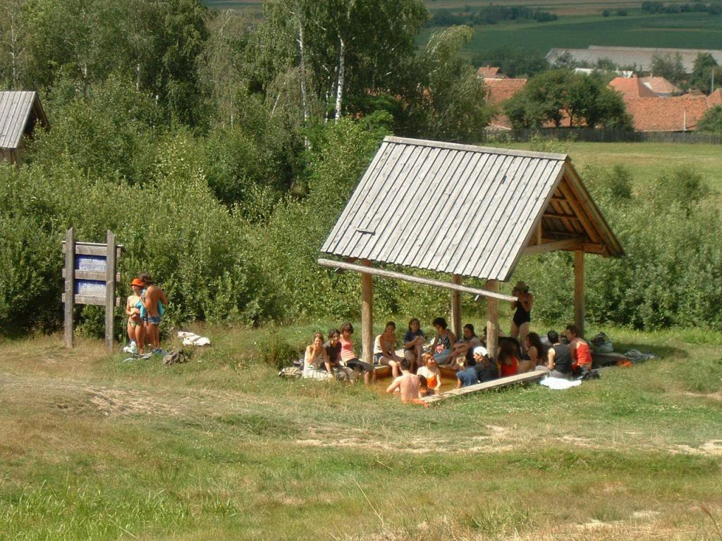 2001-lazarfalva-01jpg.jpg
