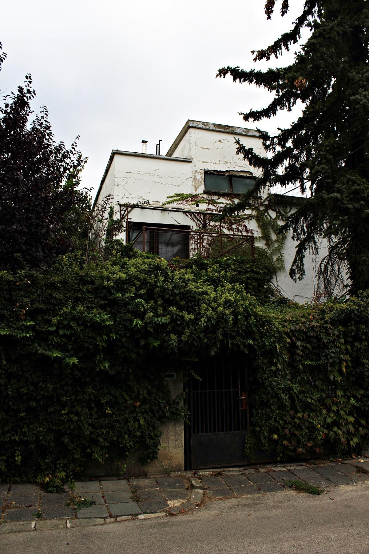 bauhaus-kiserleti-telep-napraforgo-utca-pasaret-mrfosterblog-4.JPG