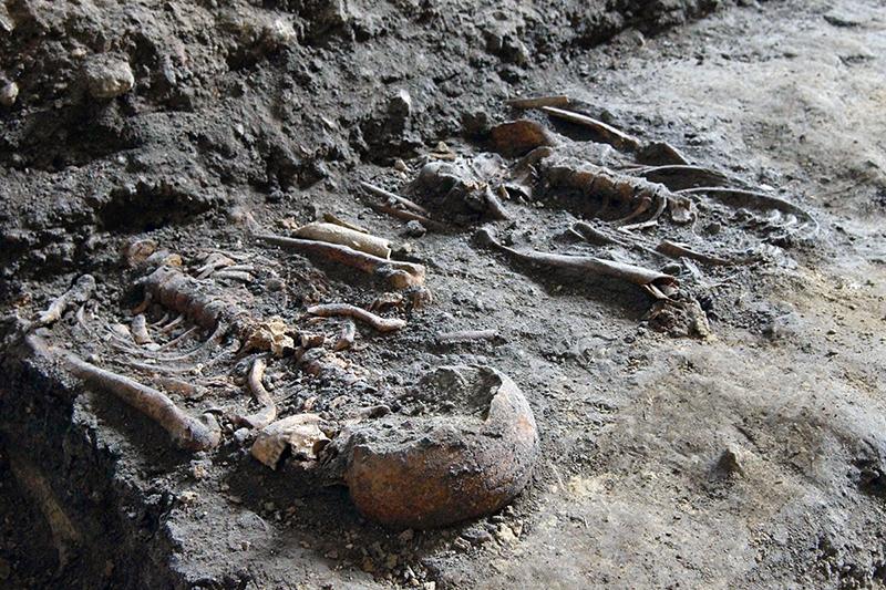 csontvazak.jpg