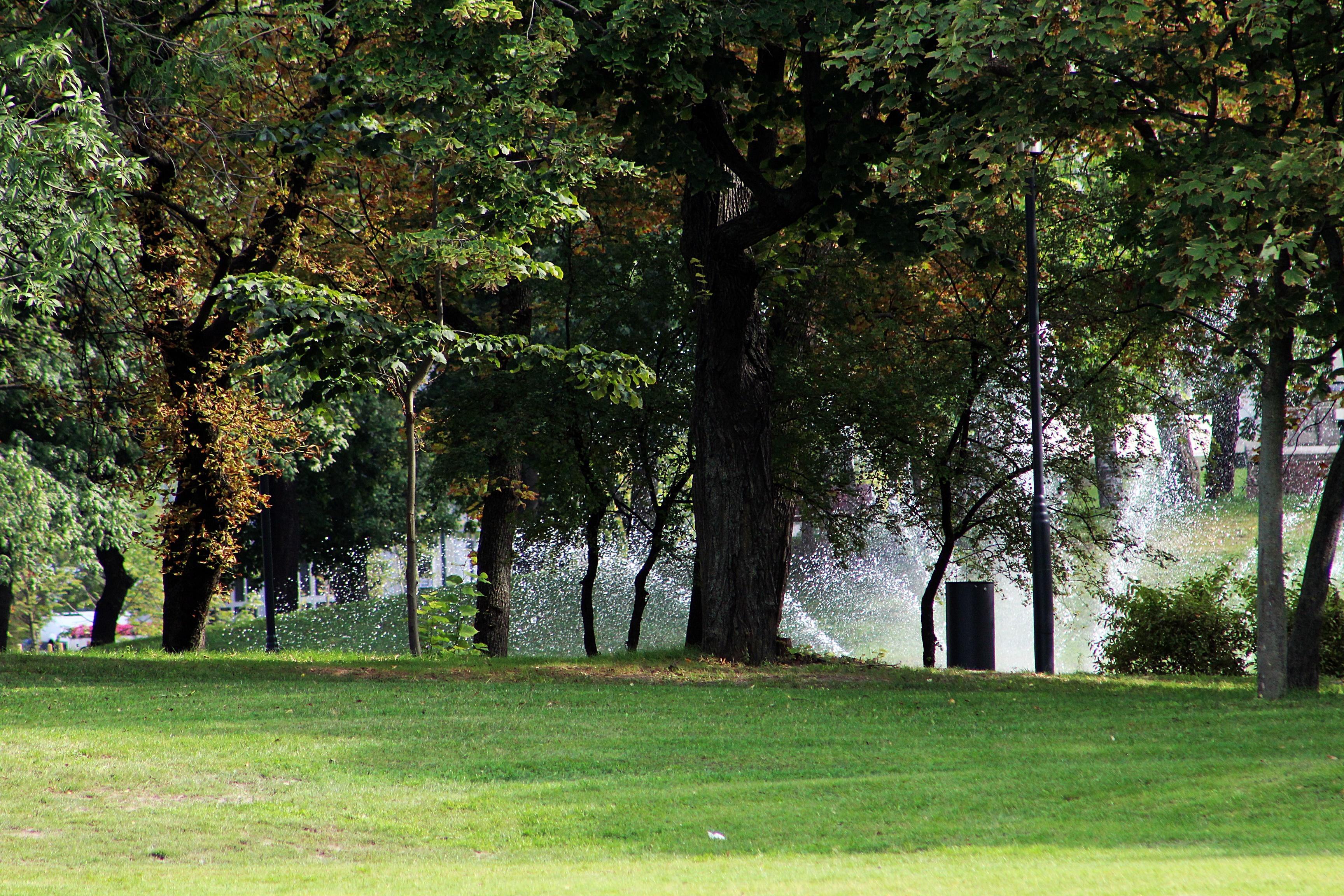 mrfoster-orczy-kert-park-ulloiut-2.JPG