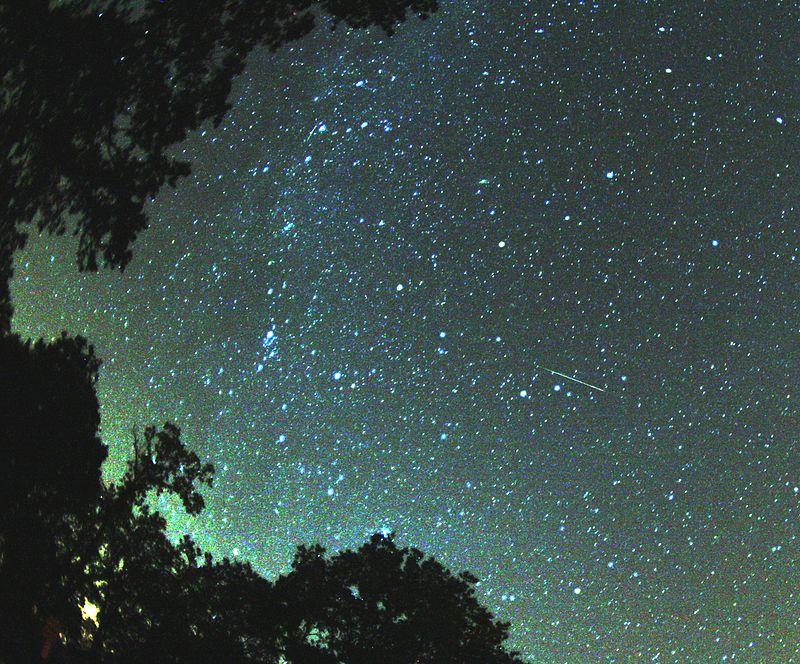 perseid_meteor_2007.jpg