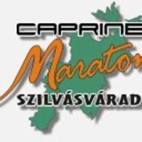 calendar concurs - versenynaptar 2010