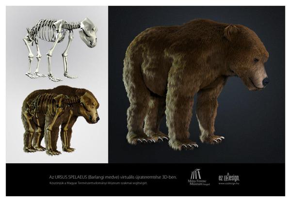 Modellt állt az Őslénytani és Földtani Tár barlangi medvéje.