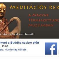 Meditációs rekordkísérlet a Magyar Természettudományi Múzeumban