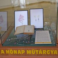 A történelem lapjai - Jávorka Sándor növényhatározója