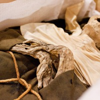 ORIGO - Kaliforniai kutatók a váci múmiák nyomában