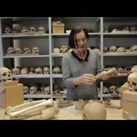 Antropológiai Műhelytitkok: 2. Miről árulkodnak a csontok?