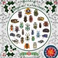 Karácsony, bogarak, vírusok, 2020