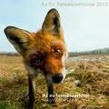 A 2013-as év legjobb hazai természetfotói