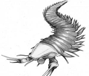 depp-lobster-300x257.jpg