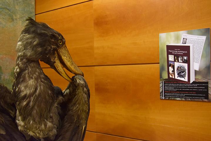 ornitologus_lexikon_konyvbemutato_2018_07_12_5_web.jpg