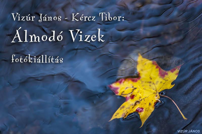 almodo_vizek_web.jpg