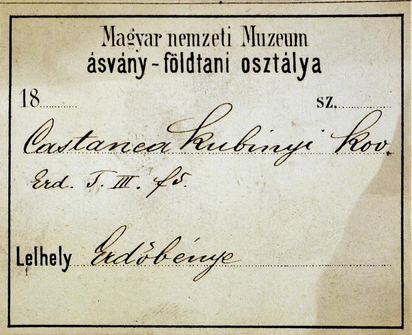 kovacs_gyula_alatetcedula_erdobenye_honap_mutargya_2020_jan_erdeib_3.jpg