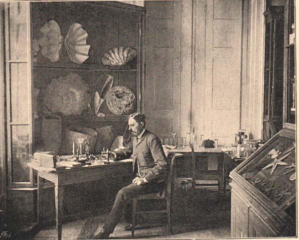 nemzetimuz_daday_1888.jpg