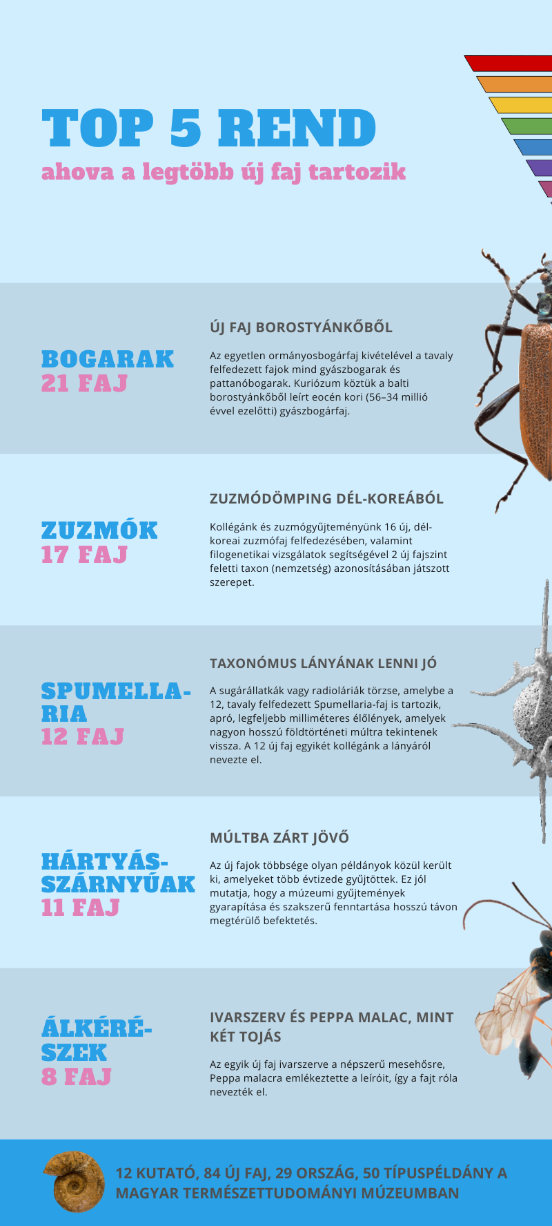 ujfajok_2020_infografika_utolso_vagott.png