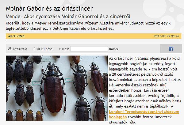 molnar_gabor_otto.jpg