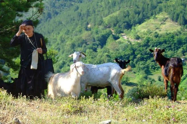 kecskek_albania_2014_angyald.png