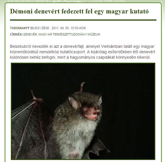 demoni_denever_csorba.jpg